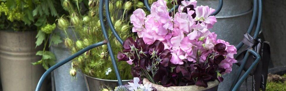 header-bloemen